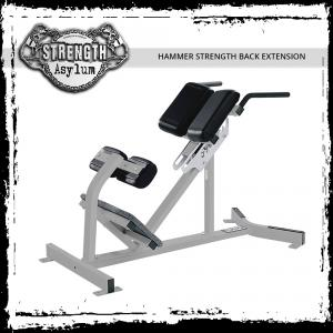 hammer-strength-back-extension