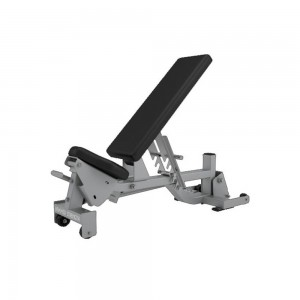 Hammer Strength Adjustable Bench lock n Dock