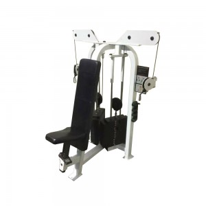 Life Fitness Cable Motion Chest Press