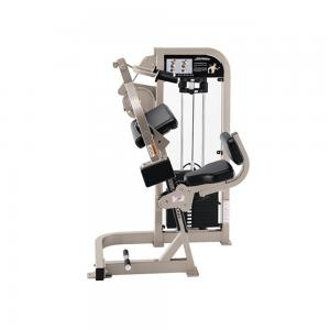 Life Fitness Pro 2 Tricep Extension