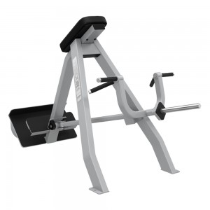 Precor Icarian T-Bar Row
